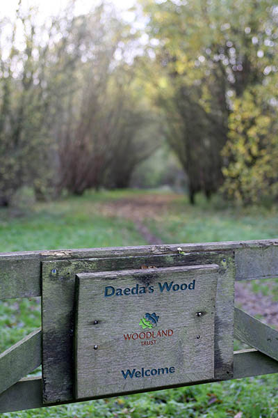 Entrance to Daeda's Wood